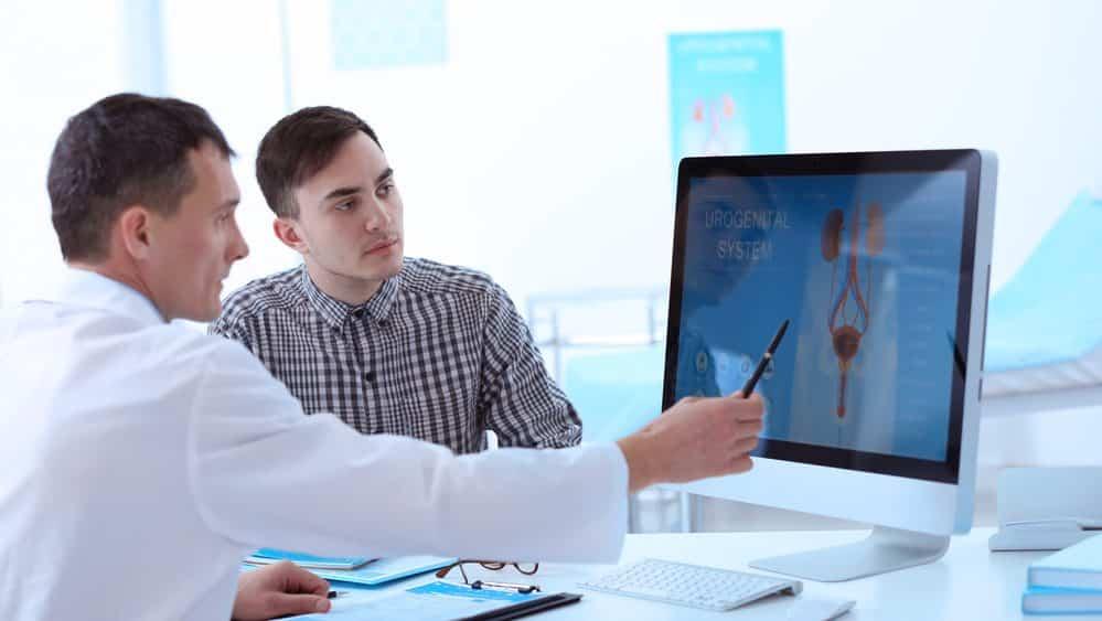 médico mostra desenho de aparelho urinário e reprodutor no computador;. Há vários problemas que acometem a próstata