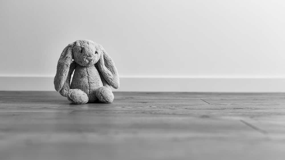 A síndrome da morte súbita infantil, que acomete bebês saudáveis, é um evento muito traumático para as famílias.