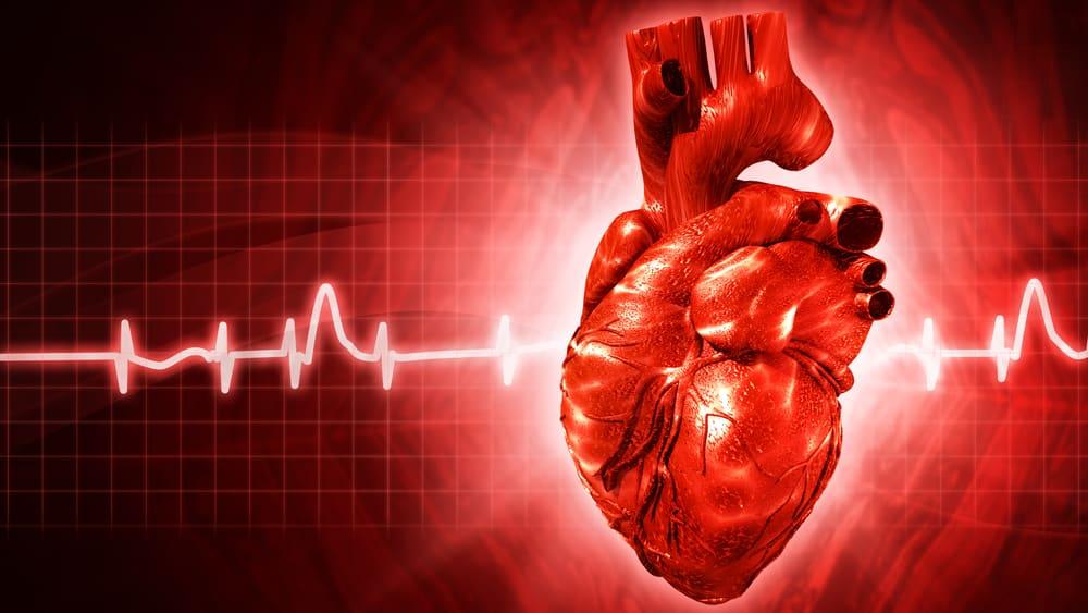 A regeneração do tecido cardíaco é um sonho antigo da medicina, por viabilizar a recuperação total das vítimas de infarto.