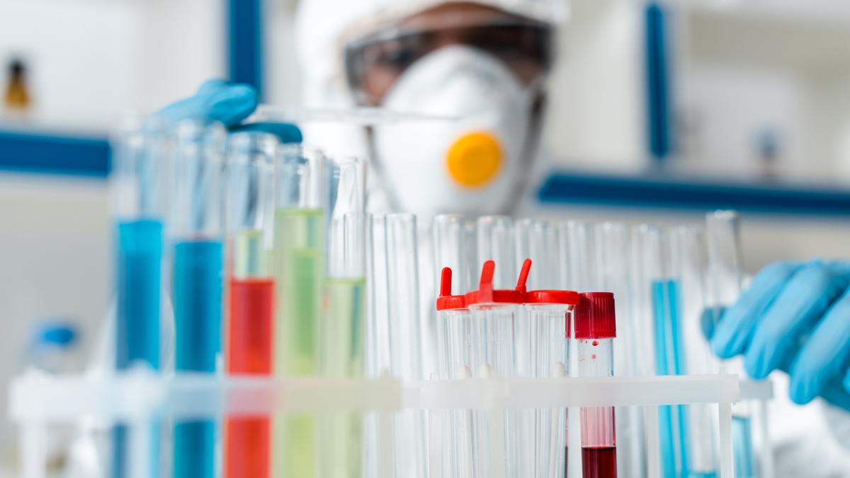 As leis que Mendel formulou com base em experiências com ervilhas constituem o princípio fundamental desta área da ciência. Saiba mais sobre a história da genética.