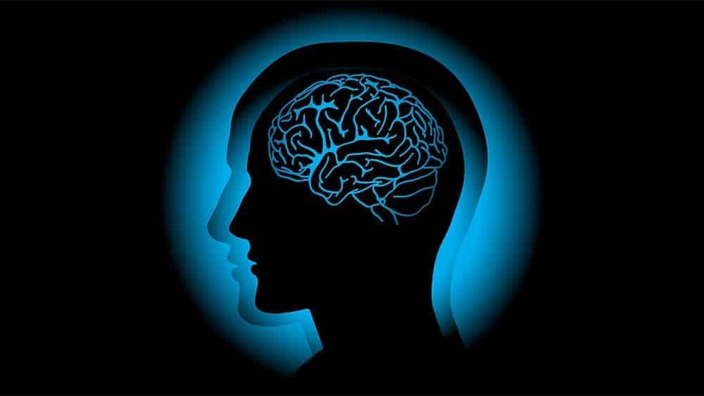 Ilustração digital de cabeça de perfil com cérebro em raio x e efeito demonstrando vibração.