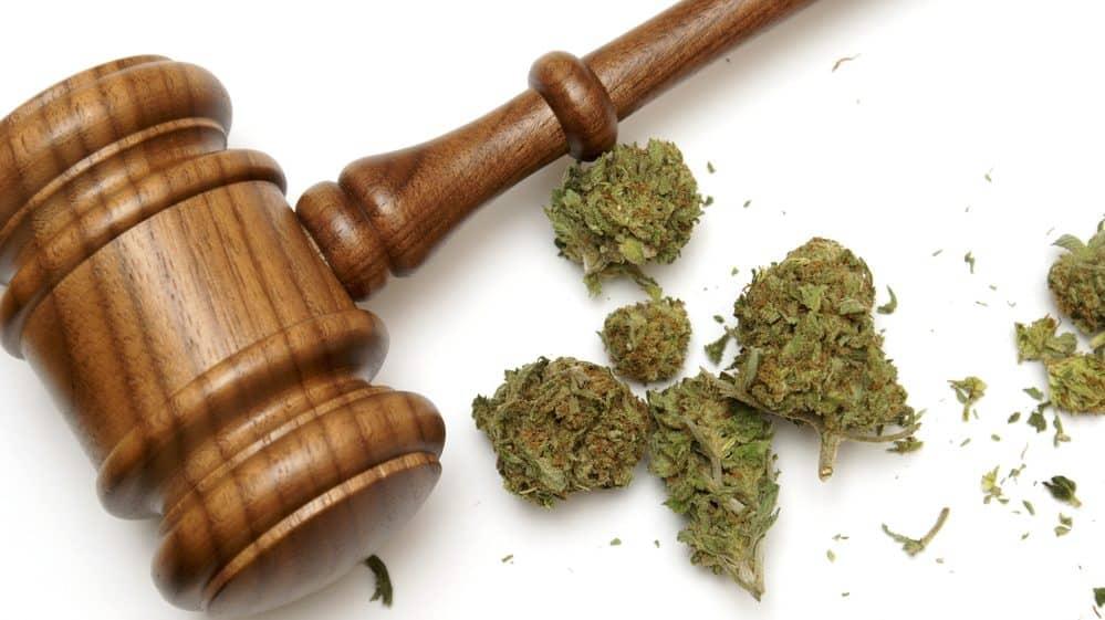 maconha e martelo simbolizando a Justiça. Legalização da maconha não é tarefa simples