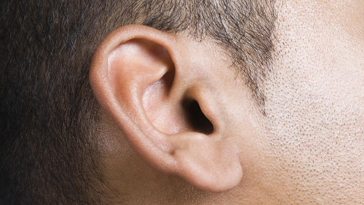 A principal função da orelha média é transmitir o som da membrana do tímpano para a orelha interna.