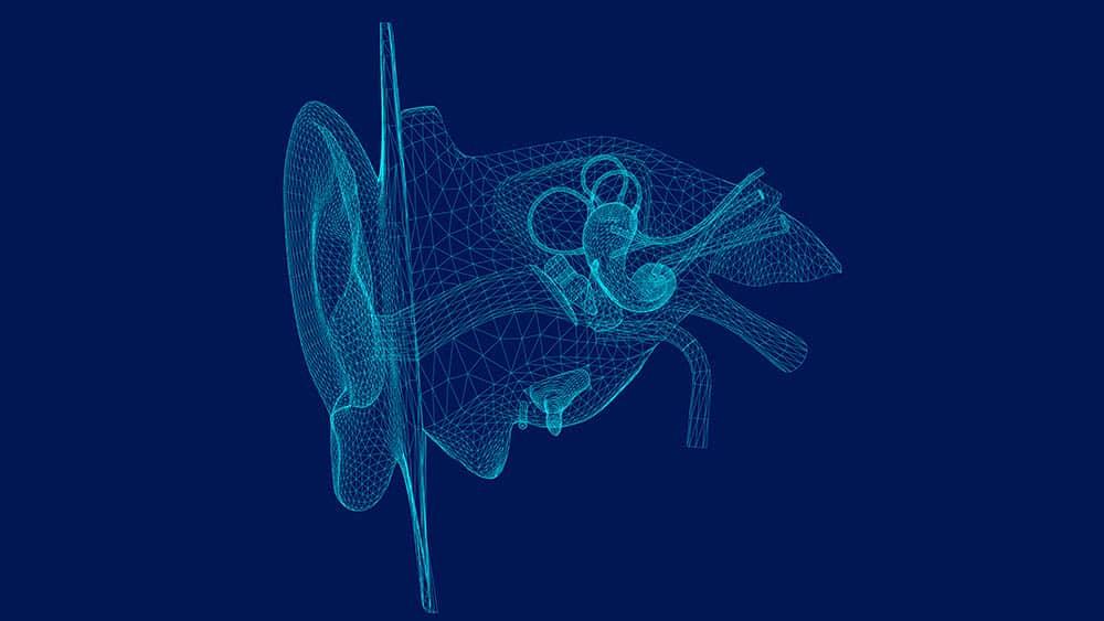 Diagrama estilizado de anatomia da orelha humana.