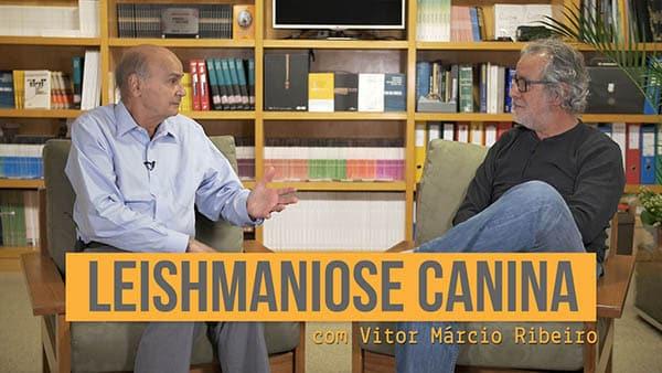 thumb leishmaniose entrevista