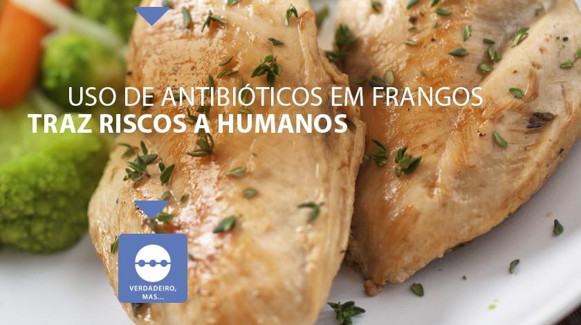 drops frango antibiotico