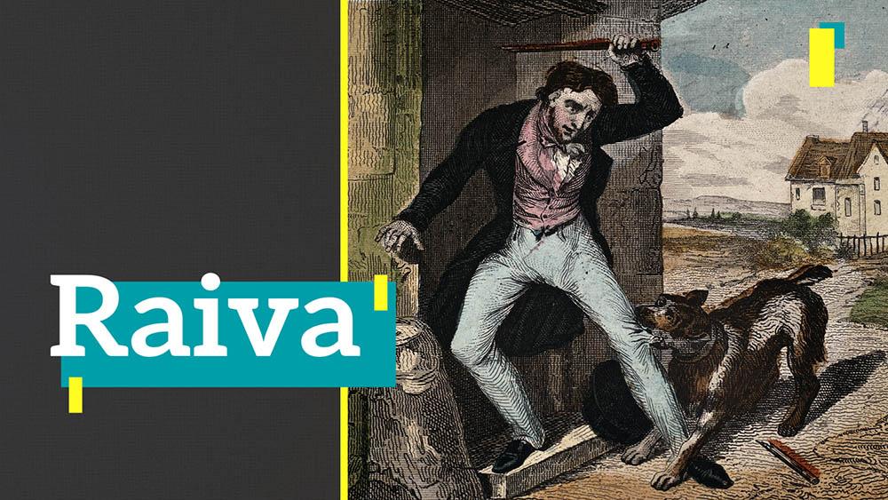 Thumbnail do quadro Recorte sobre raiva, com ilustração de um homem sendo mordido na perna por um cachorro.