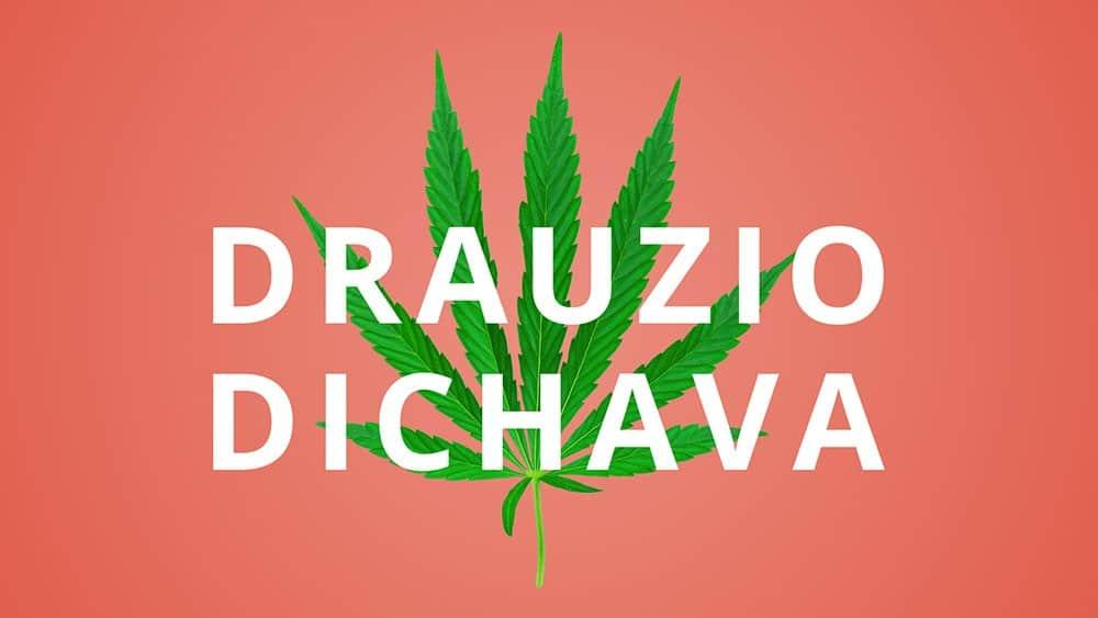 """Ilustração de uma folha de maconha sobre fundo laranja e com texto """"Drauzio Dichava""""."""