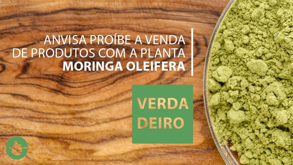 foto de farinha de moringa oleifera