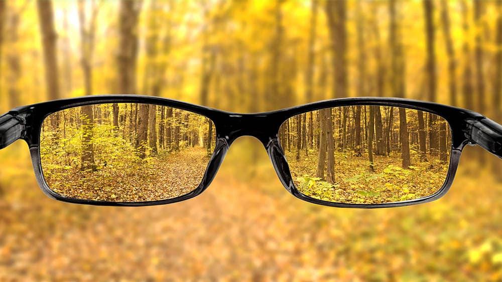 Visão subjetiva de óculos com imagem nítida de floresta e imagem borrada ao longe.